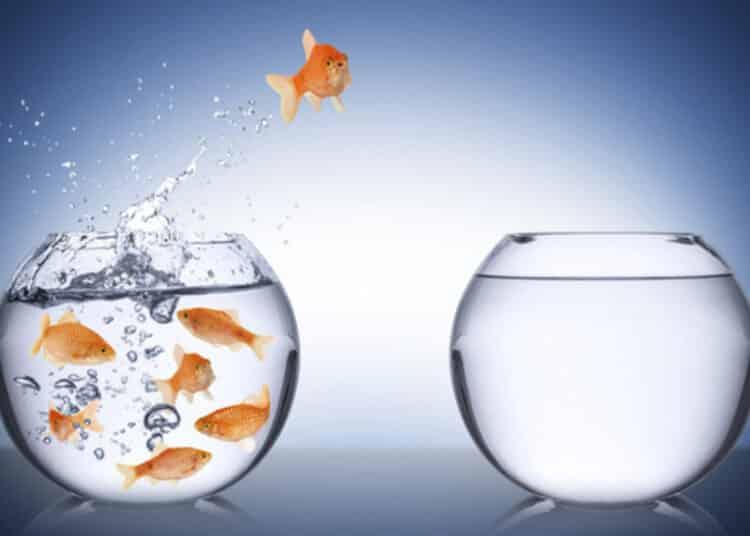 kỹ năng thích ứng trước những sự thay đổi